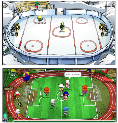 Ice Rink and Sports Place